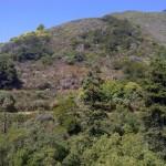 northern california big sur