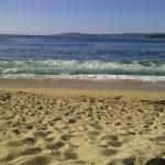northern california coastline beach