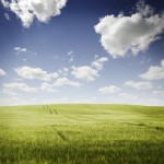 iStock_000017711962XLarge grass sky clouds idea